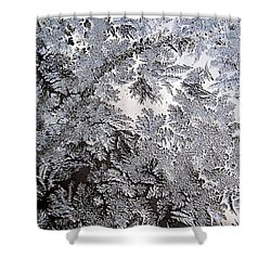 Frosted Glass Abstract Shower Curtain by Christina Rollo