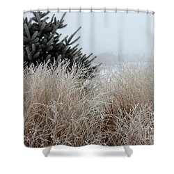 Frosted Grasses Shower Curtain by Debbie Hart