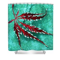 Frosted Japanese Maple Shower Curtain