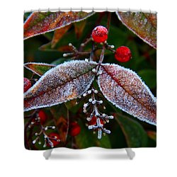 Frosted Nandina Leaves Shower Curtain