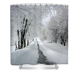 The Long Frosted Road Shower Curtain