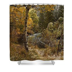 Frosty Fall  Morning Shower Curtain by Duncan Selby