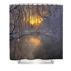 Frosty Morn 2 Shower Curtain by Dan Myers