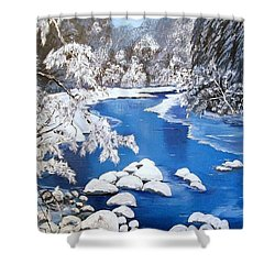 Shower Curtain featuring the painting Frosty Morning by Sharon Duguay