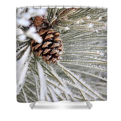 Frosty Norway Pine Shower Curtain