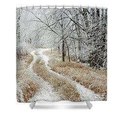 Shower Curtain featuring the photograph Frosty Trail 2 by Penny Meyers