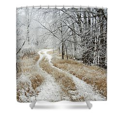 Frosty Trail Shower Curtain