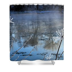 Frosty Webs And Weeds Shower Curtain by Hanne Lore Koehler