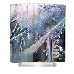 Frosty Window Dressing Shower Curtain