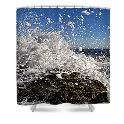 Froth And Bubble Shower Curtain