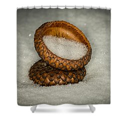 Frozen Acorn Cupule Shower Curtain by Paul Freidlund