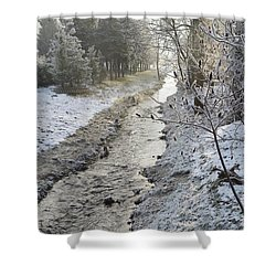 Shower Curtain featuring the painting Frozen Air by Felicia Tica