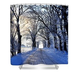 Frozen Alley Shower Curtain