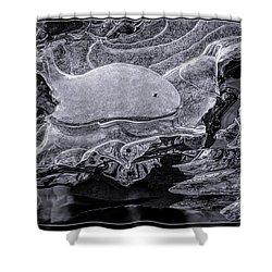 Frozen Beached Whale Shower Curtain by LeeAnn McLaneGoetz McLaneGoetzStudioLLCcom