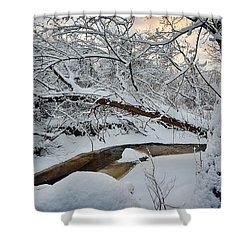Frozen Creek Shower Curtain by Sebastian Musial