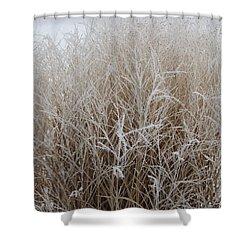 Frozen Grass Shower Curtain by Debbie Hart
