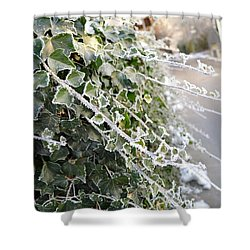Shower Curtain featuring the painting Frozen Hedera Helix by Felicia Tica