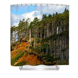 Shower Curtain featuring the photograph Frozen In Time by Jeanette C Landstrom