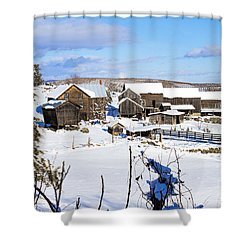 Frozen In Time Two In Color Shower Curtain
