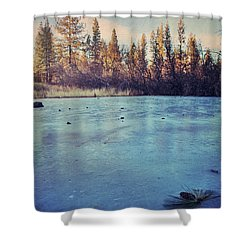 Frozen Shower Curtain by Laurie Search