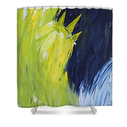 Frozen Liberty Shower Curtain
