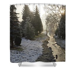 Shower Curtain featuring the painting Frozen Light by Felicia Tica