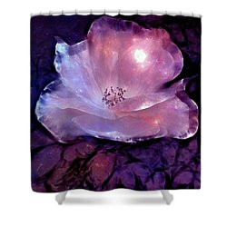 Frozen Rose Shower Curtain by Lilia D