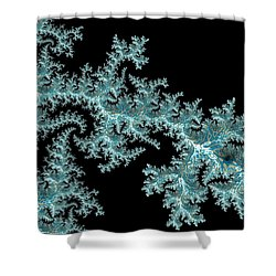 Frozen Shower Curtain by Susan Maxwell Schmidt
