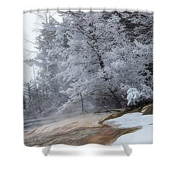 Frozen Tree Shower Curtain