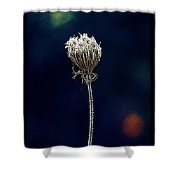 Shower Curtain featuring the photograph Frozen Warmth by Melanie Lankford Photography