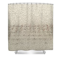 Frozen Window Shower Curtain