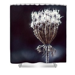 Shower Curtain featuring the photograph Frozen Wisps by Melanie Lankford Photography