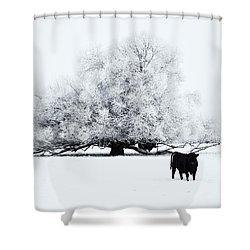 Frozen World Shower Curtain by Mike  Dawson