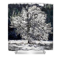 Frozen Yosemite Morning Shower Curtain