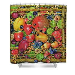Fruit In Bamboo Box Shower Curtain by EB Watts