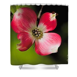 Fruit Tree Flower Shower Curtain