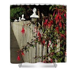 Fuchsias  And Fence Posts Shower Curtain