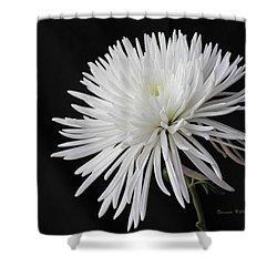 Fuji Mum Shower Curtain