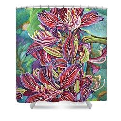 Full Blossom Orchid Tree Shower Curtain