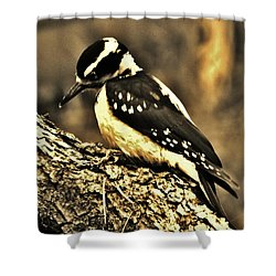 Shower Curtain featuring the photograph Full-color Not Needed by VLee Watson