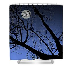 Full Moon And Black Winter Tree Shower Curtain by Ben and Raisa Gertsberg
