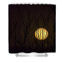 Full Moon Behind The Trees Shower Curtain by Angela A Stanton
