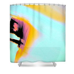 Full Moon Shower Curtain by Jacqueline McReynolds