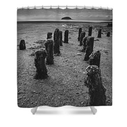Fundy Dock Shower Curtain