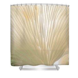 Fungus Shower Curtain by Steven Ralser