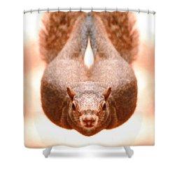 Flying Funky Brown Squirrel Shower Curtain by Belinda Lee