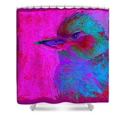 Funky Kookaburra Australian Bird Art Prints Shower Curtain
