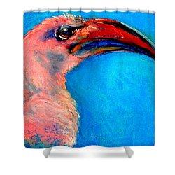 Funky Red-billed Hornbill Art Print Shower Curtain