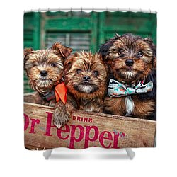 Furry Trio Shower Curtain