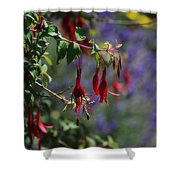 Fuschia Shower Curtain by Carol  Eliassen